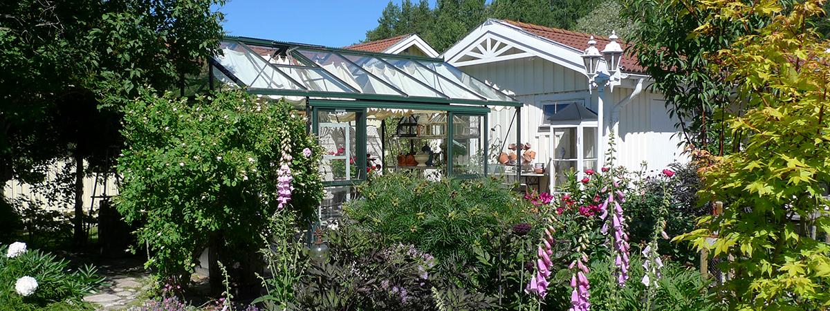 Trädgård Pia och Hans