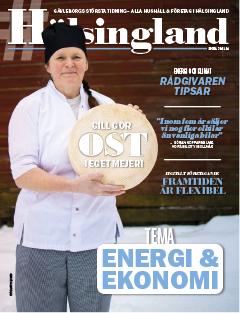 Tidningen #Hälsingland södra 2021-01